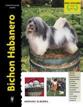Bichon habanero (excellence-raza especial)