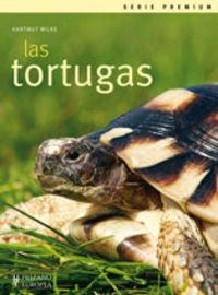Tortugas,las
