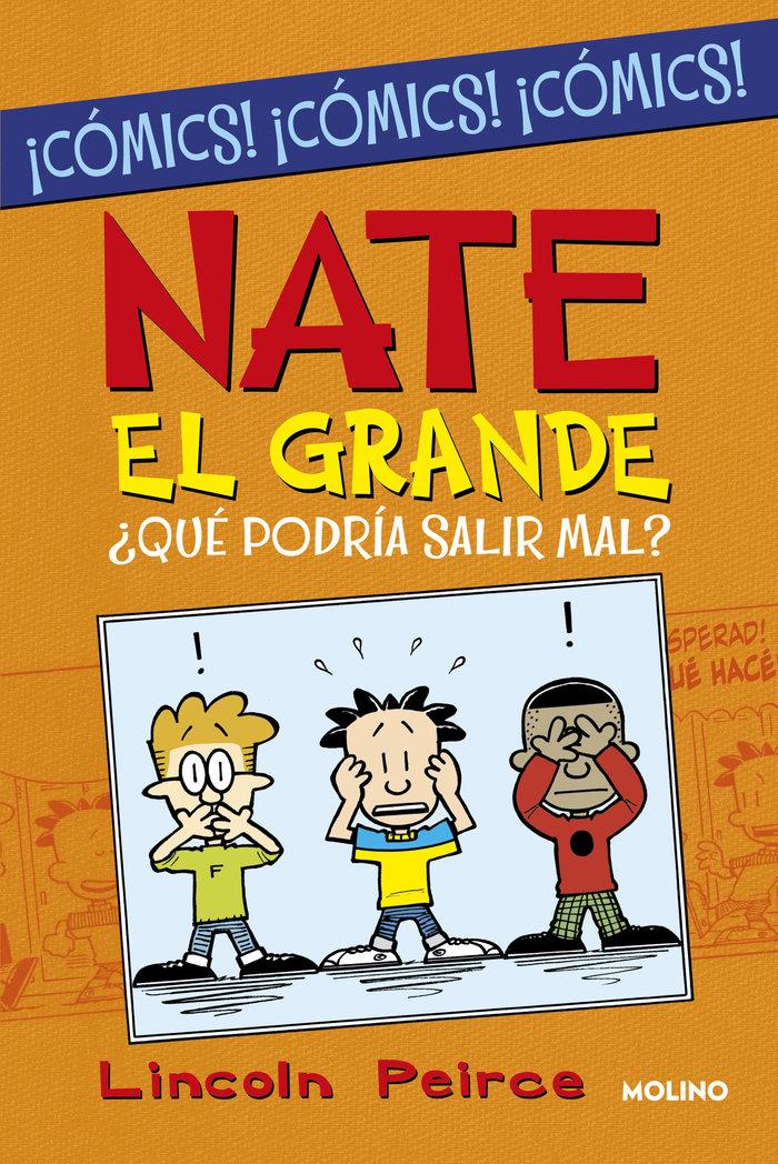 Nate el grande que podria salir mal
