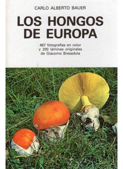 Hongos europa/omega