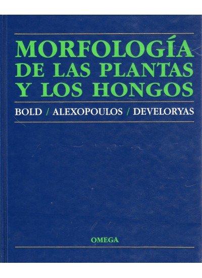 Morfologia plantas y hongos