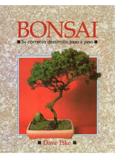 Bonsai correcto desarrollo paso a paso