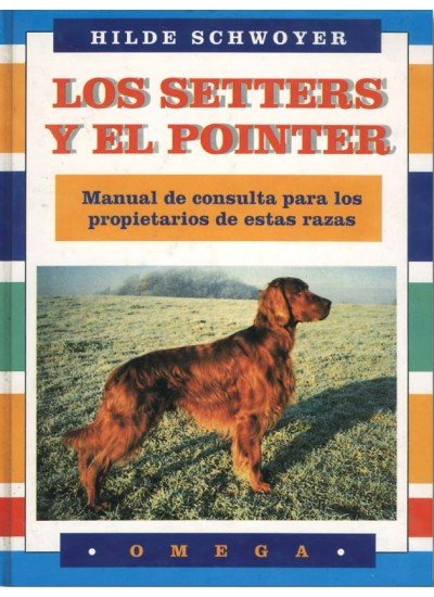 Setters y el pointer manual consulta
