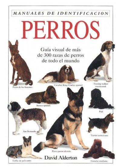 Perros manual de identificacion