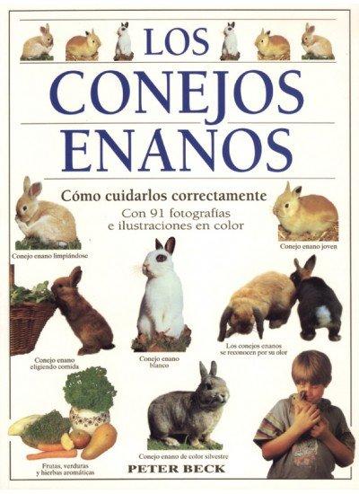 Conejos enanos,los