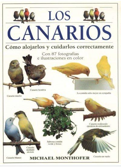 Canarios,los