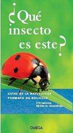 Que insecto es este