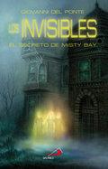 Invisibles bruja de dark falls,la