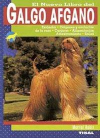 Galgo afgano
