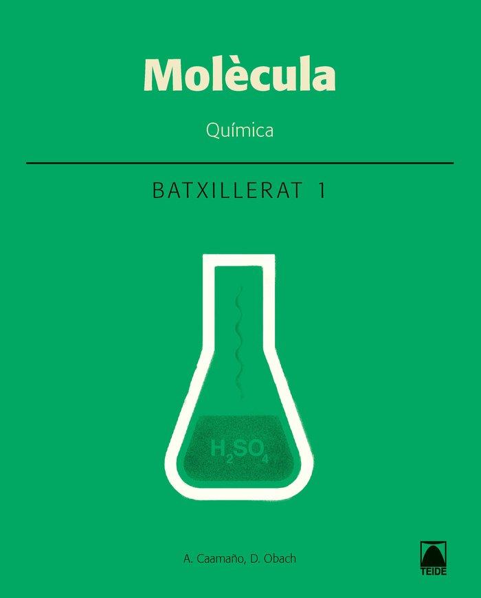 Molecula quimica 1ºnb cataluña 17