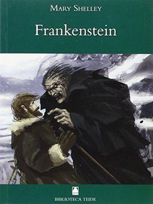 Frankenstein 17 bib.teide