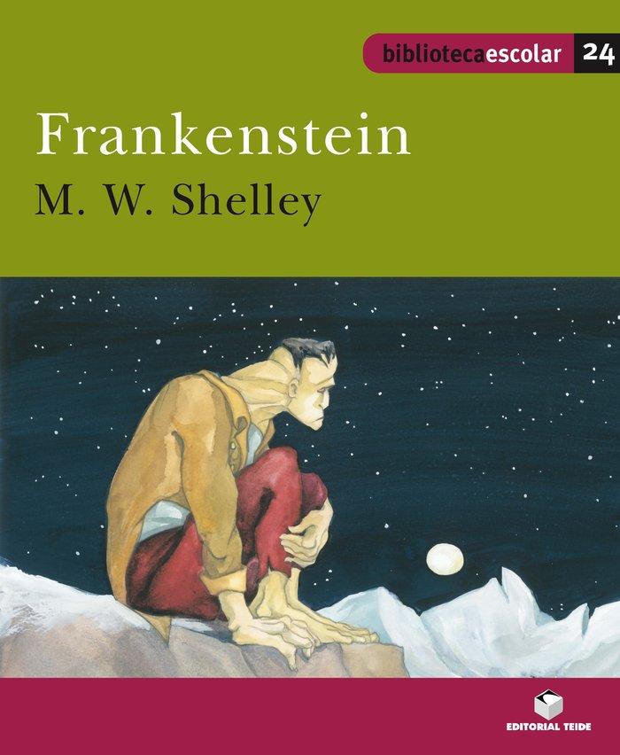 Frankenstein 24 bib.escolar