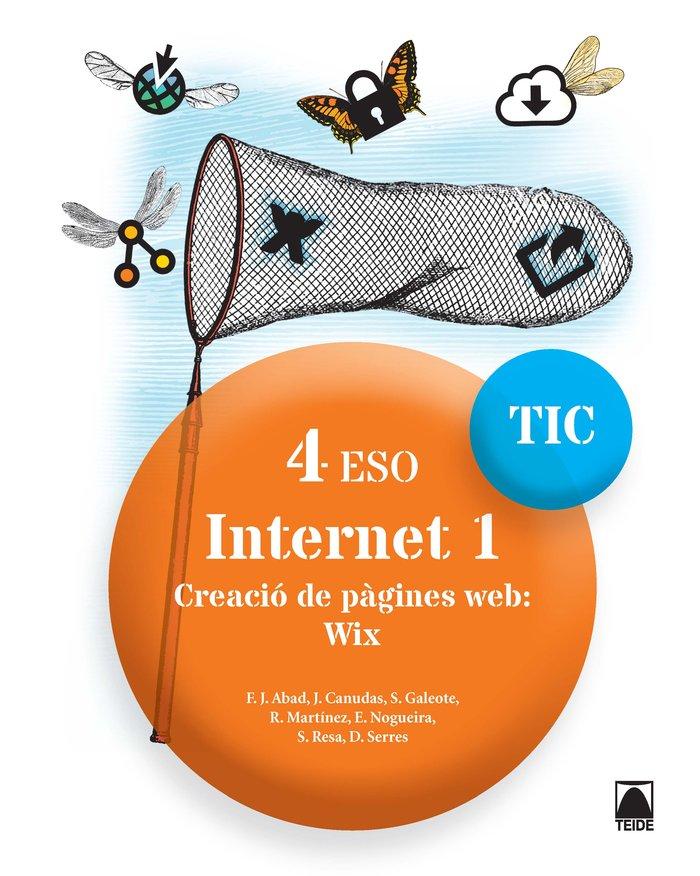 Internet 1 4ºeso cataluña 17 tic
