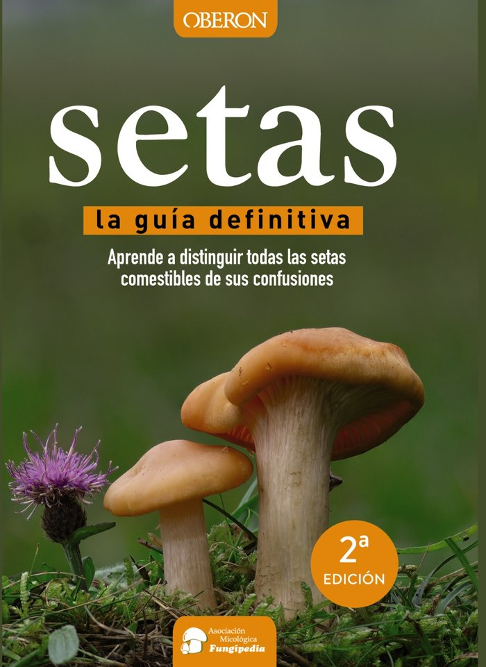 Setas