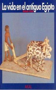 Vida en el antiguo egipto