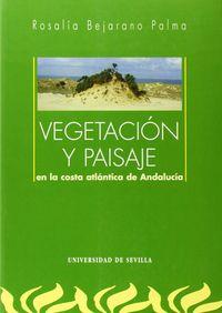Vegetacion y paisaje en costa