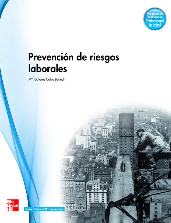 Prevencion de riesgos gm 2010 cf