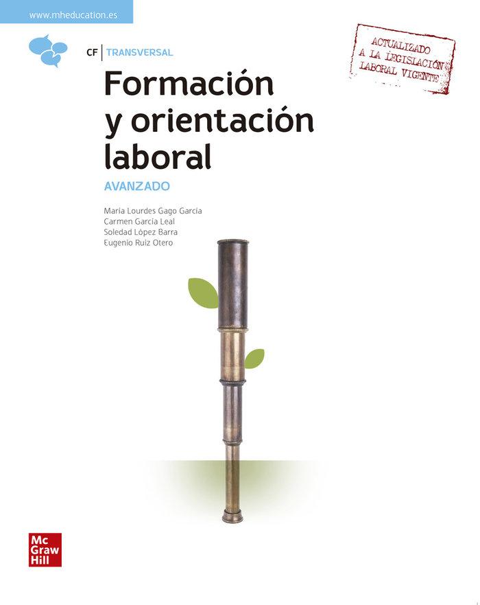 Formacion orientacion laboral avanzado gs 21 cf