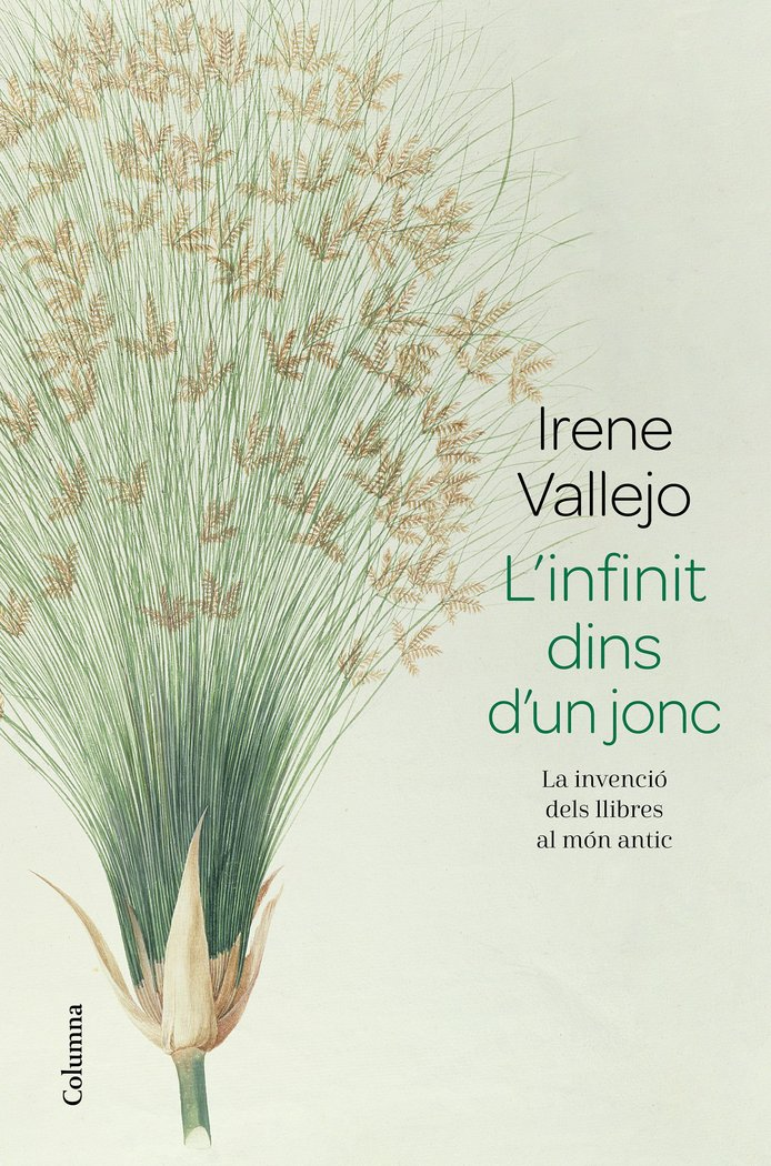 Linfinit dins dun jonc catalan