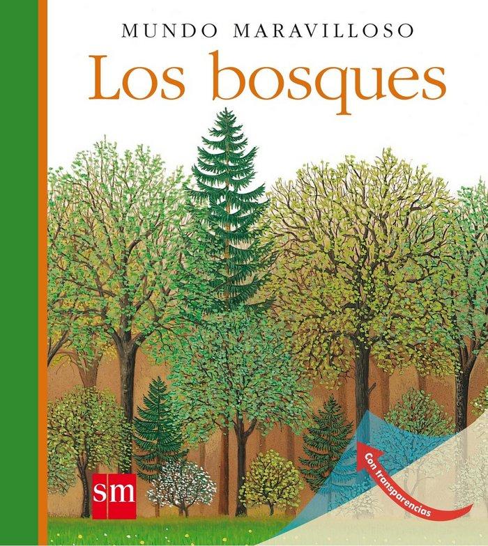 Bosques,los