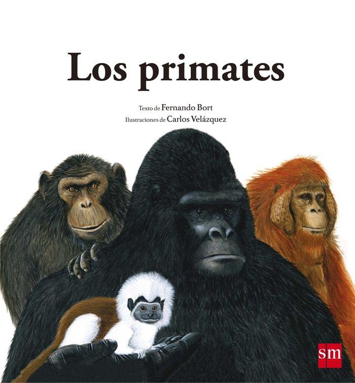 Primates,los