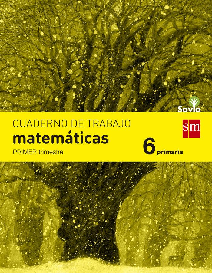 Cuaderno matematicas 1 6ºep savia 15