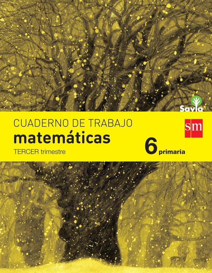 Cuaderno matematicas 3 6ºep savia 15