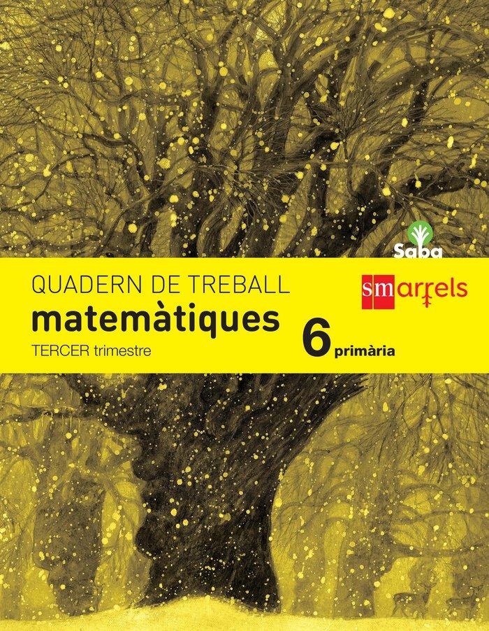 Quadern de matematiques. 6 primaria, 3 trimestre.