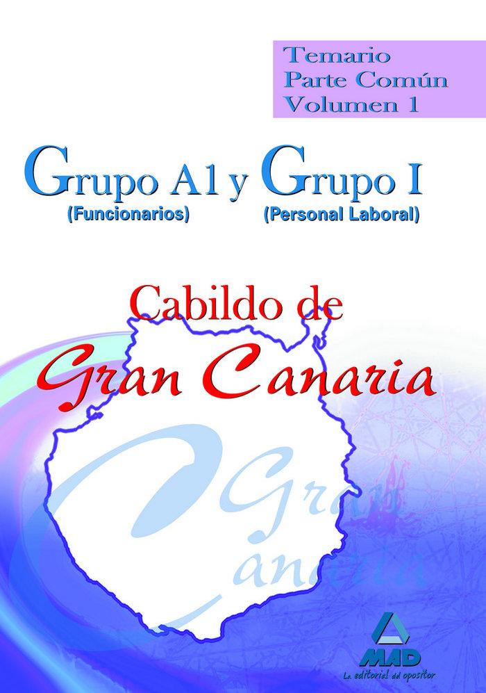 Grupo a1 (funcionarios) y grupo i (personal laboral) del cab