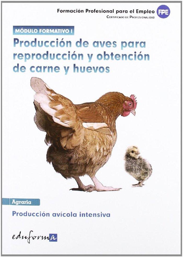 Produccion de aves para reproduccion y obtencion de carnes y
