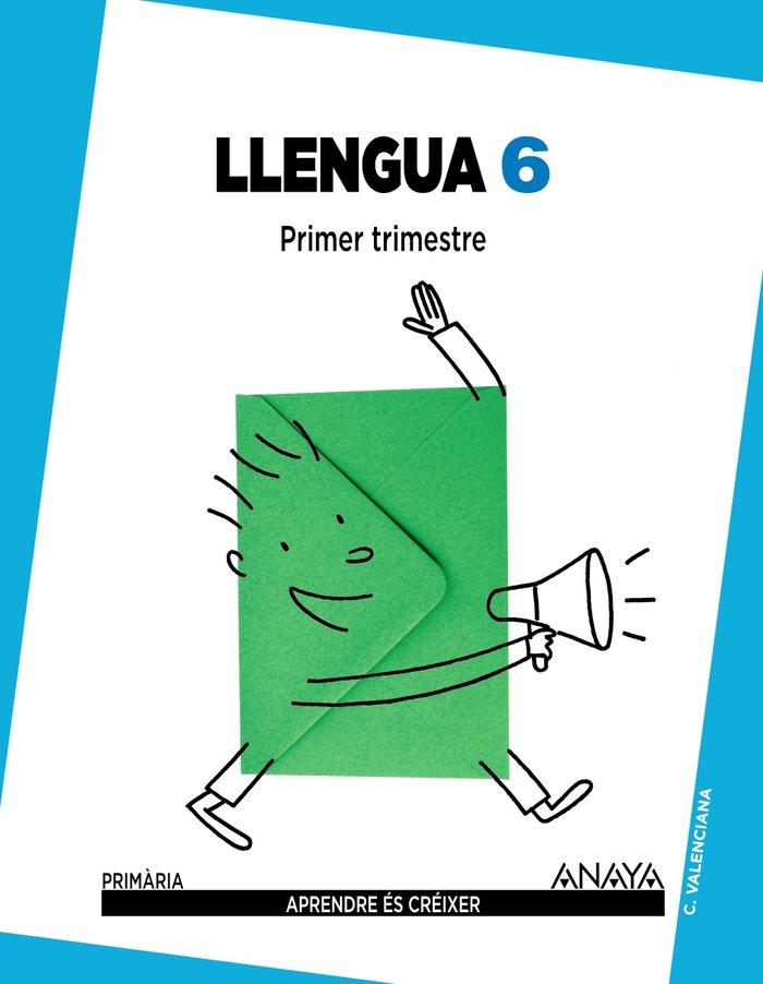 Llengua 6