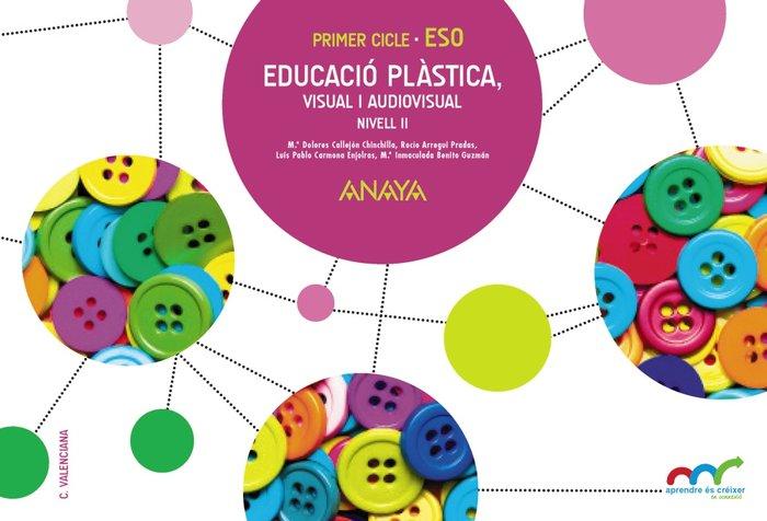 Educacio plastica,visual i audiovisual. nivell ii