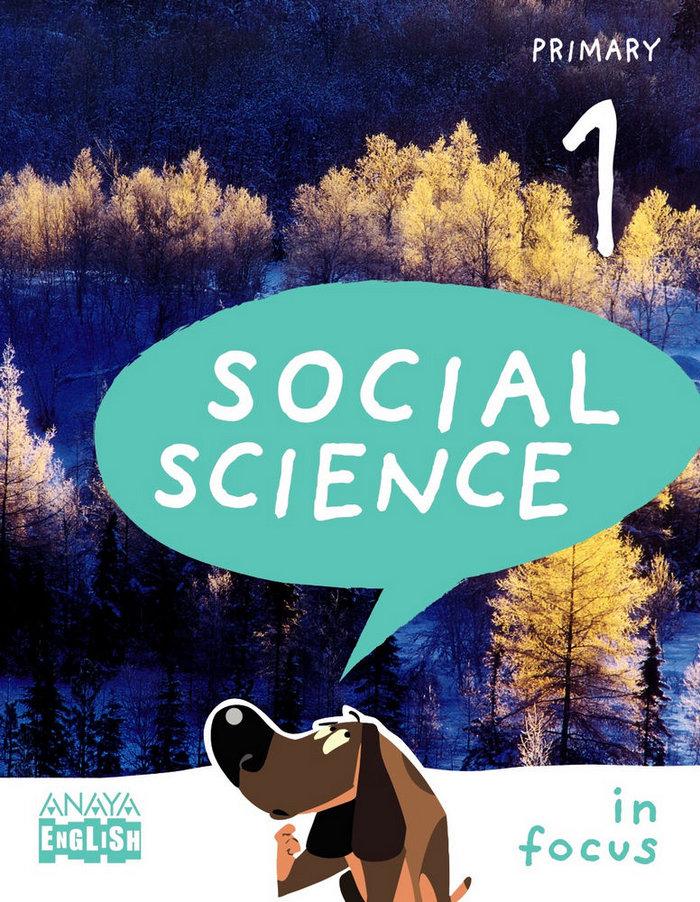Social science 1ºep leon/navar/vasco 15 in focus