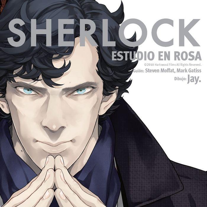 Sherlock estudio en rosa