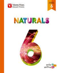 Ciencies naturals 6ºep valencia 15