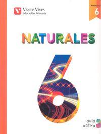 Naturales 6ºep trimestres andalucia 15 aula activa