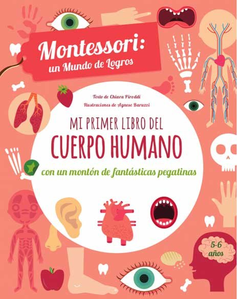 Mi primer libro del cuerpo humano (vvkids)