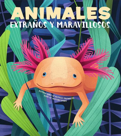 Animales extraños y maravillosos vvkids