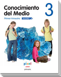 Medio 3 pixel madrid trimestral e.p.3