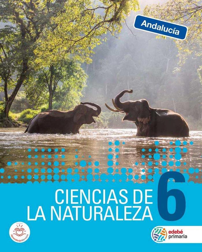 Ciencias naturaleza 6ºep andalucia 19