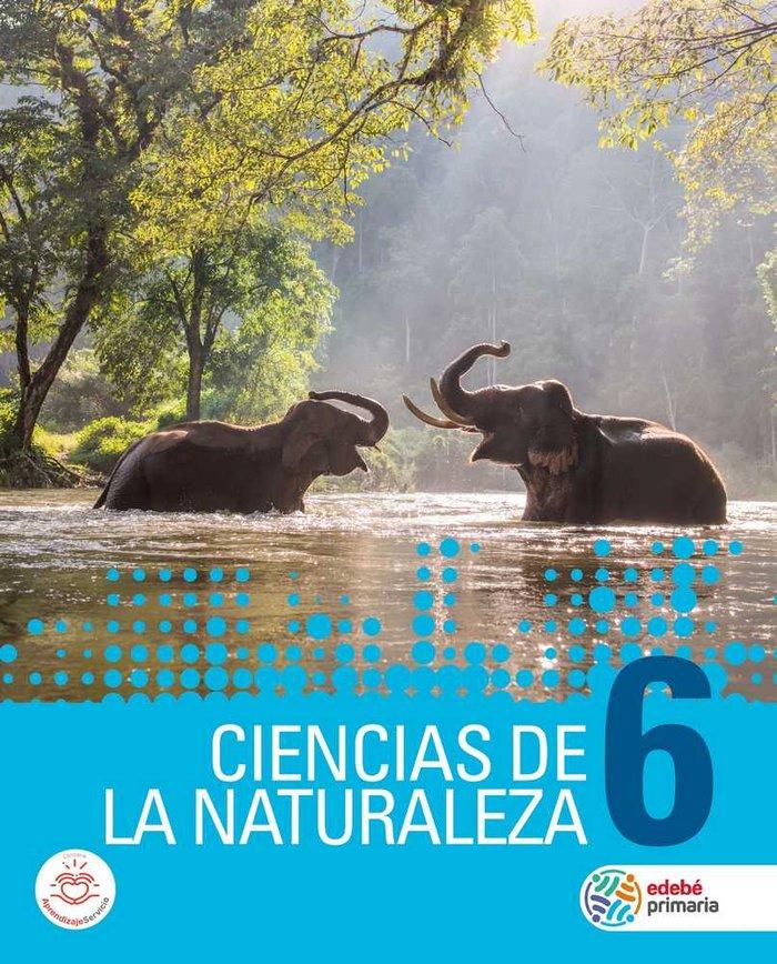 Ciencias naturaleza 6ºep mec 19