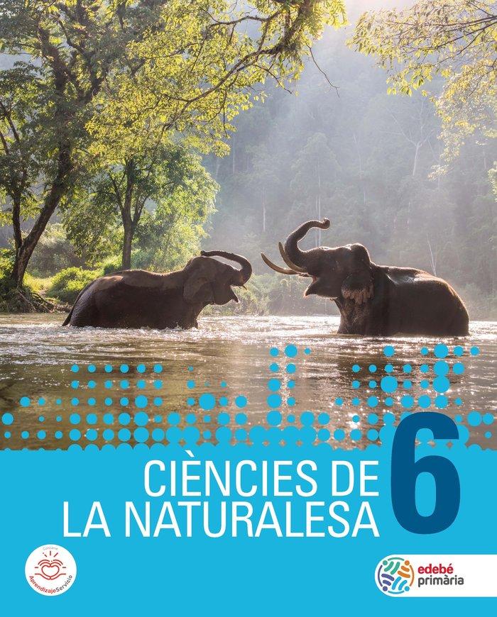 Ciencies naturalesa 6ºep cataluña 19