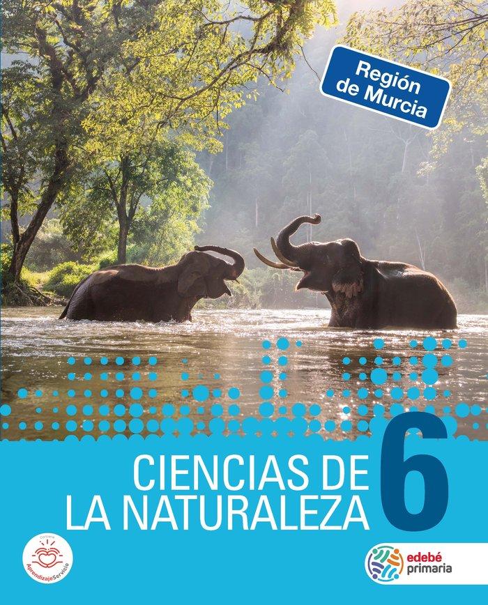 Ciencias naturaleza 6ºep murcia 19