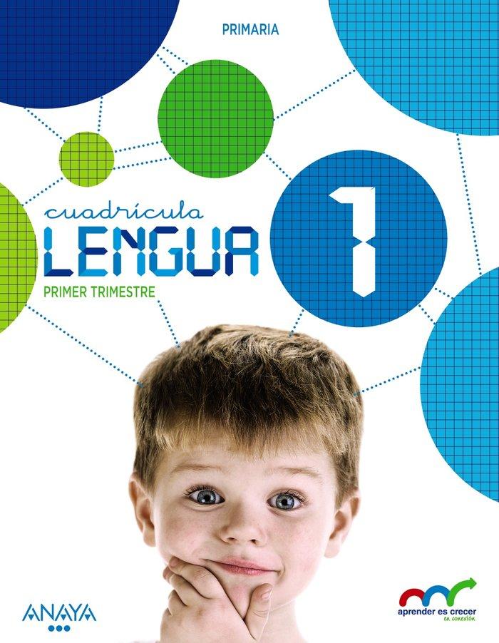 Lengua 1ºep cuadricula c.leon 15