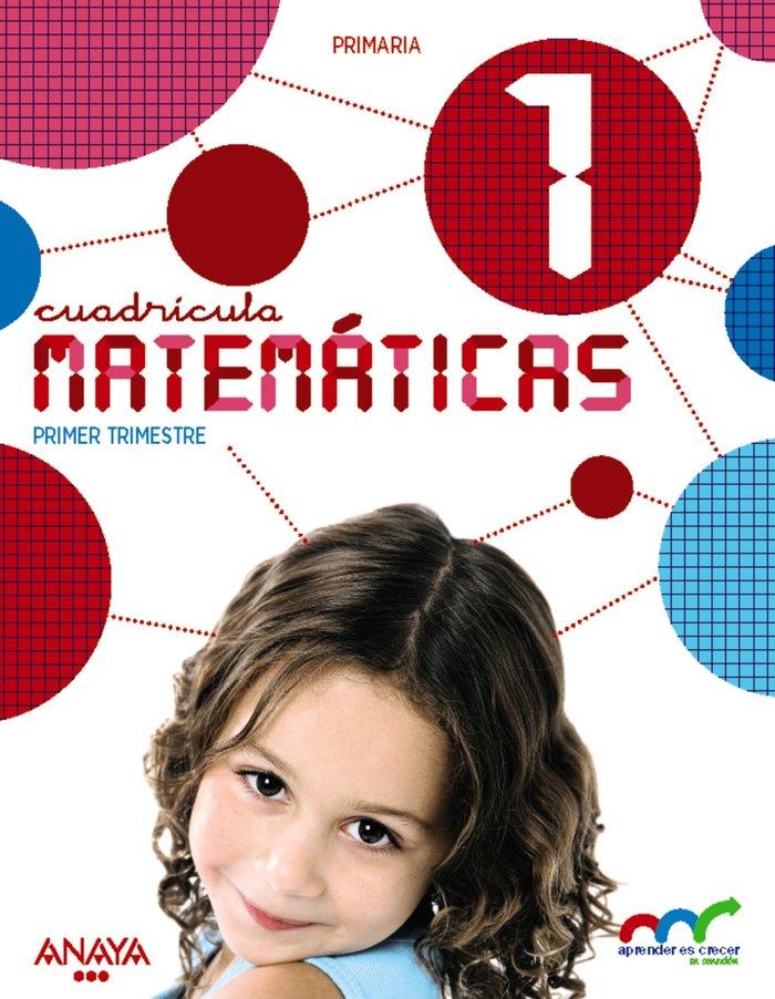 Matematicas 1ºep cuadric.15 leon ap.crecer en cone
