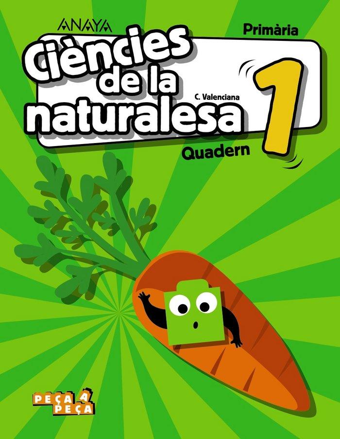 Quadern ciencies naturalesa 1ºep 18 valenc.peca a