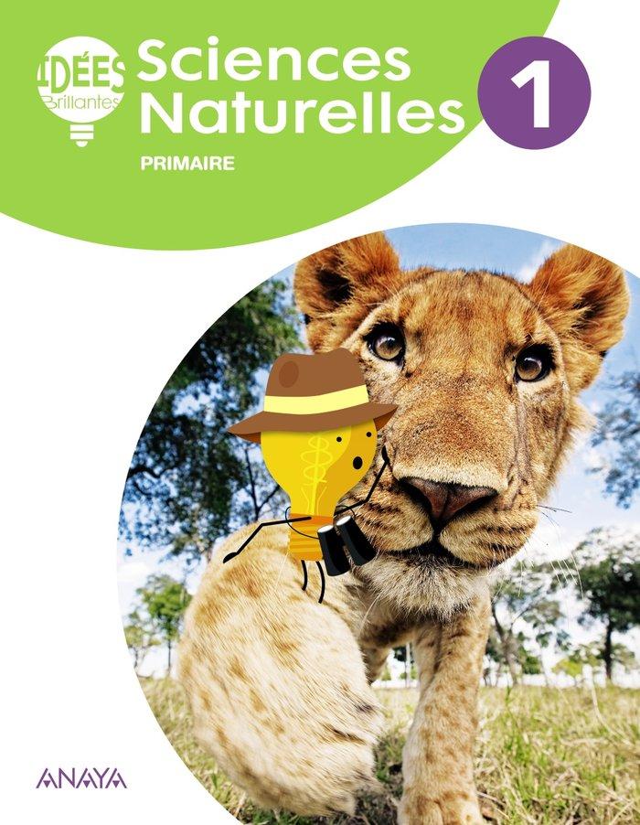 Sciences naturelles 1ºep eleve 18 idees brillantes