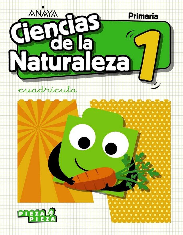 Ciencias naturaleza 1ºep andalucia cuadric.19