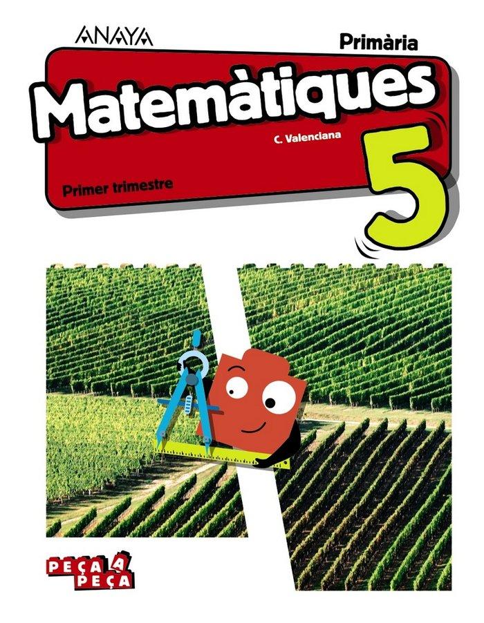 Matematiques 5ºep valencia 19