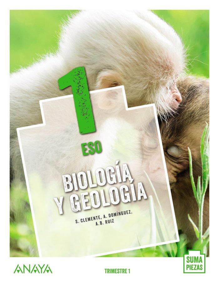 Biologia geologia 1ºeso cant/c.man/c.val 20 suma p